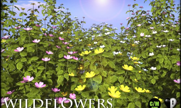 WILDFLOWERS -Dog Rose. L$499. 🎁