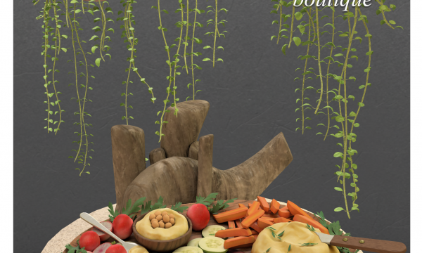 Vegan Hummus Party Platter & Lipstick Hanging Plant in Coco Husk. L$229 each.