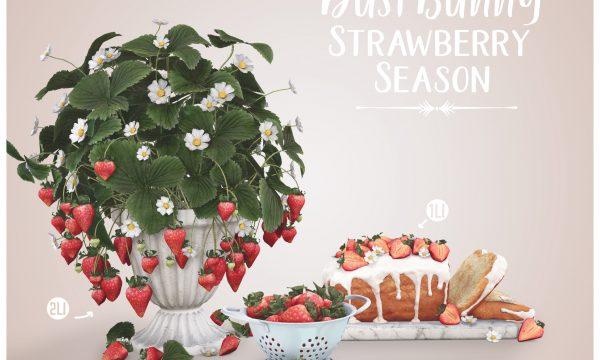 Strawberry Season. L$250.