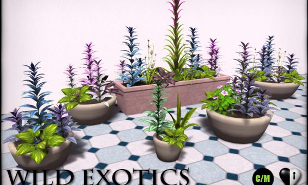 Persian Shield and Potted Persian Shield. Persian Shield is L$699. Potted Persian Shield is L$399.