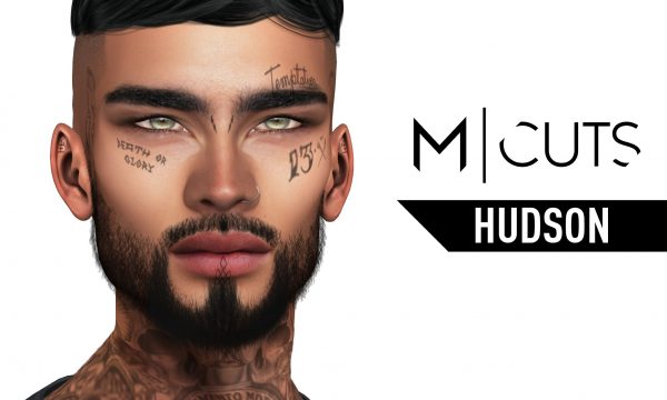 Modulus - Hudson Hair. Individual L$320 | Fatpack L$1020. Demo Available.